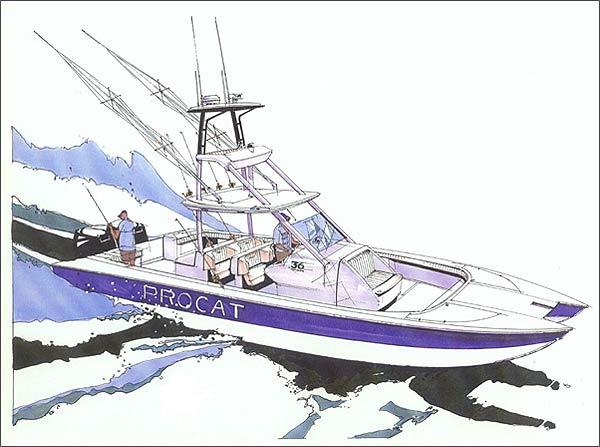 Pro Cat 36: A Fishing Machine