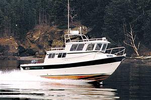 Sea Sport 27: Gone Fishing