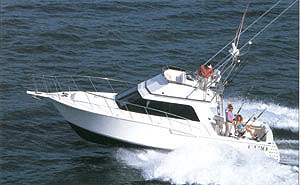 While many boats in this class have true deep-V hulls, the Cabo 35 was intended to be a fishing machine, so stability while trolling was important.
