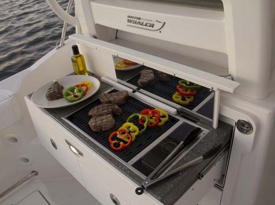 boston whaler conquest 315 summer kitchen