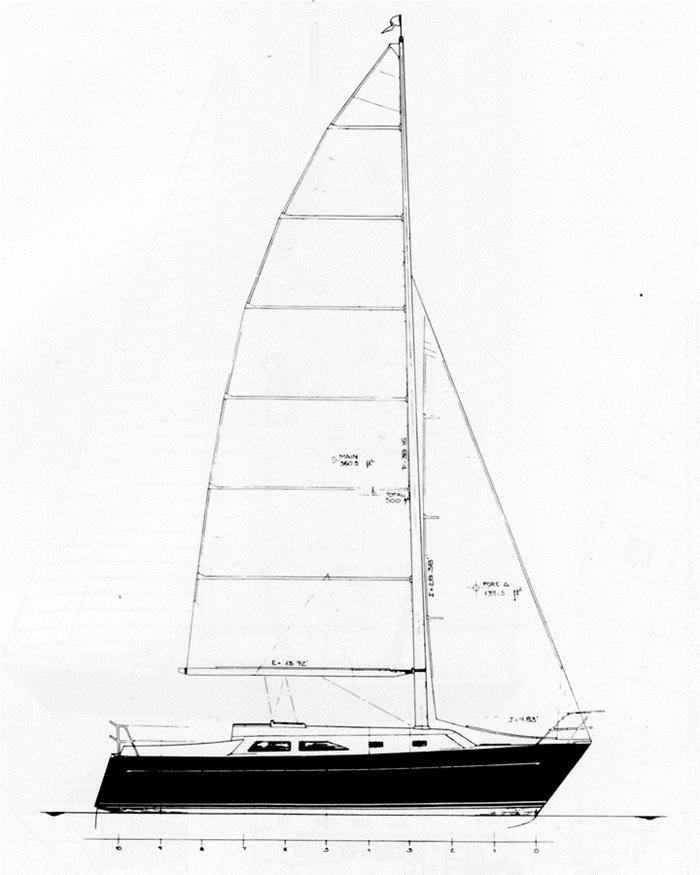 Freedom 30 sailplan