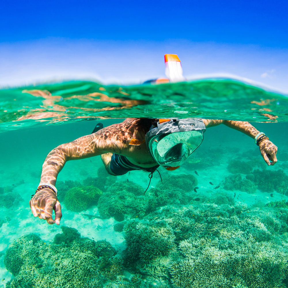 Snorkling will be a whole new experience, if you leave an Aria under the tree.