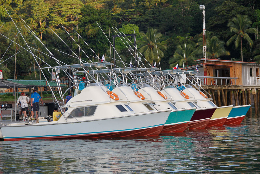 The fleet awaits a day of serious fishing, at Tropic Star Lodge. Photo courtesy of Tropic Star Lodge.
