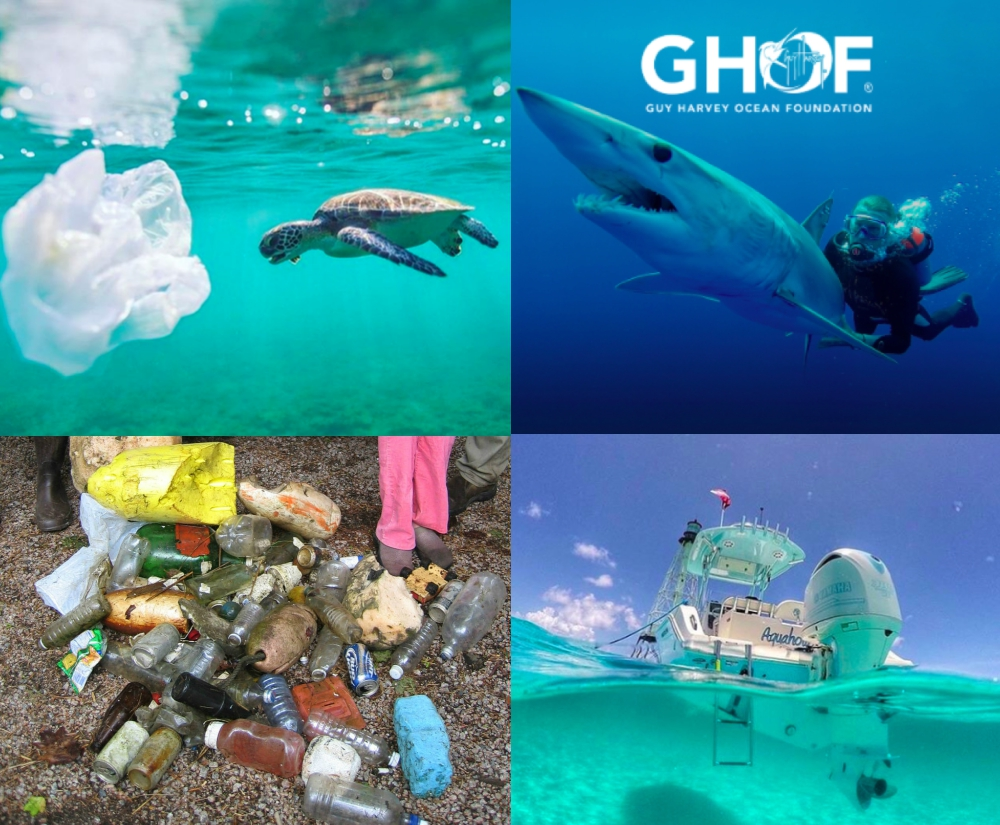 Ocean Pollution: Staying Green to Keep Our Oceans Blue