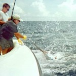 Teen Wins Drambuie Key West Marlin Event