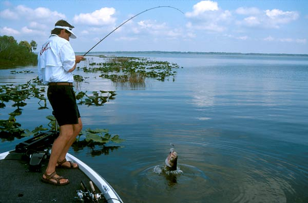 Hot for Bass? - boats com