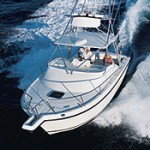 Shamrock 290 Offshore: Sea Trial