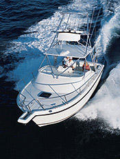 The 290 Offshore is a stablemate of Shamrock's popular 290 Walkaround.