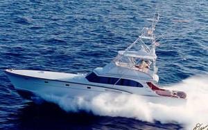 Ryco 65