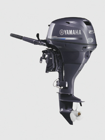 The F25 from Yamaha can be had with a new, stronger tiller. It's also offer in a high-thrust configuration for pontoon boat duty.
