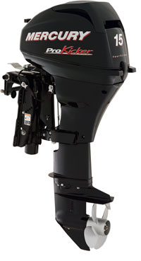 The four-stroke Mercury 15 ProKicker weighs 45 pounds less than the Evinrude E-TEC 15.