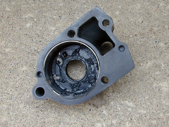 Outboard Expert Water Pump Impellers Boats Com