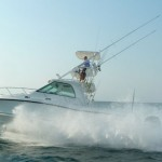 Boston Whaler 345 Conquest: Cushy Angler