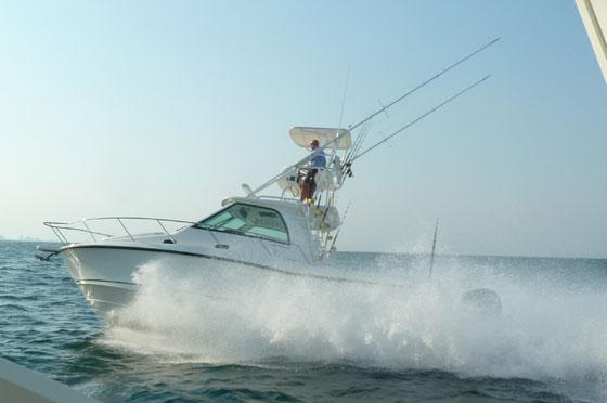 Whaler 345 running