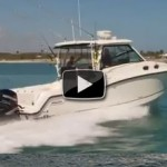 2012 Boston Whaler 315 Conquest: Video Boat Review