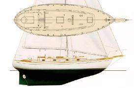 Tayana 37 layout