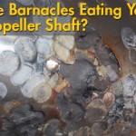Are Barnacles Eating My Propeller Shaft?