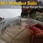 The World's 10 Weirdest Fishing Baits