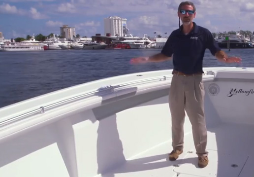 Yellowfin 36 first look