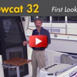 Arrowcat 32: First Look Video