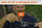 How to tie a palomar knot video instruction