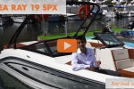 Sea Ray 19 spx runabout first look video