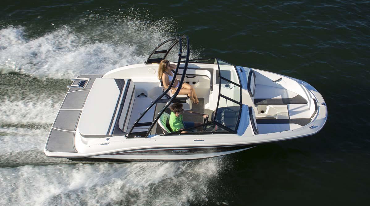 Sea Ray 19 Spx The Fun Starts Now Boats Com