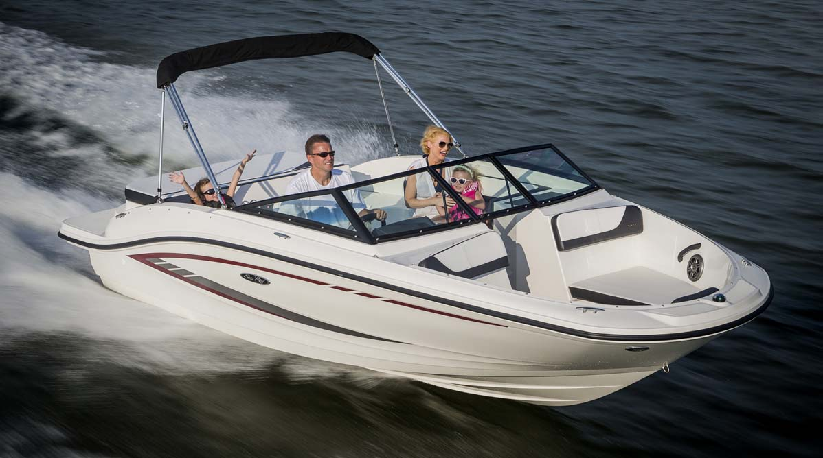 Sea Ray 19 Spx The Fun Starts Now Boats Com