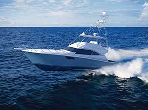 Bertram 540 Sportfish: Sneak Peek