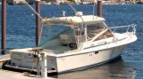 Blackfin 29 Combi: Used Boat Review