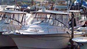 Grady-White 330 Express: Used Boat Review