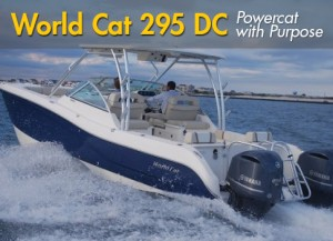 World Cat 295 DC: Powercat with Purpose