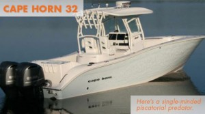 Cape Horn 32: Vicious to the Fishes