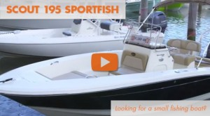 2014 Scout 195 Sportfish: First Look Video