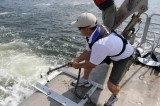 Anchor Throw-Down: Fortress Anchor Tests 11 Popular Hooks