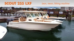 Scout 255 LXF: Lean, Mean, Sportfishing Machine