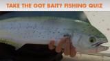 Take the Got Bait? Fishing Quiz